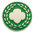 honor-pin